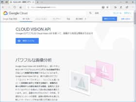 Delphi で Google Vision API を使ってランドマーク認識して地図表示する