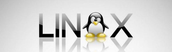 Как подготовиться к работе Delphi на Linux?
