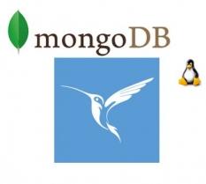 Установка InterBase и MongoDB в Linux (Ubuntu server)