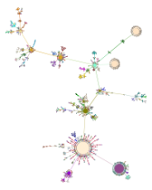 The inheritance tree of all Fire Monkey objects.