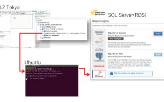 Ubuntu(FireDAC)を使ってMS SQL Server(RDS)に接続する。[JAPAN]