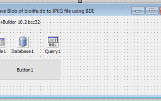 Save Paradox Blob format to a file using BDE