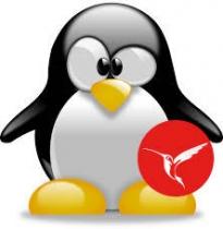 InterBase 2017 als Dienst (Service) unter Linux (Ubuntu)