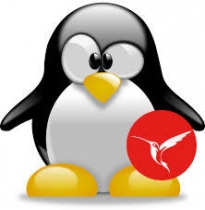 InterBase 2017/Linux und Delphi/Linux (Vorschau)